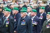 Remembrance Sunday at the Cenotaph 2015: Group B36, Intelligence Corps Association. Cenotaph, Whitehall, London SW1, London, Greater London, United Kingdom, on 08 November 2015 at 11:43, image #276