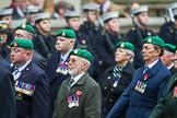 Remembrance Sunday at the Cenotaph 2015: Group B36, Intelligence Corps Association. Cenotaph, Whitehall, London SW1, London, Greater London, United Kingdom, on 08 November 2015 at 11:43, image #277