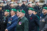 Remembrance Sunday at the Cenotaph 2015: Group B36, Intelligence Corps Association. Cenotaph, Whitehall, London SW1, London, Greater London, United Kingdom, on 08 November 2015 at 11:43, image #278