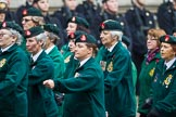 Remembrance Sunday at the Cenotaph 2015: Group B37, Women's Royal Army Corps Association. Cenotaph, Whitehall, London SW1, London, Greater London, United Kingdom, on 08 November 2015 at 11:43, image #292
