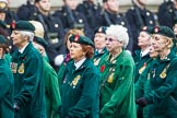 Remembrance Sunday at the Cenotaph 2015: Group B37, Women's Royal Army Corps Association. Cenotaph, Whitehall, London SW1, London, Greater London, United Kingdom, on 08 November 2015 at 11:43, image #293