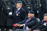 Remembrance Sunday at the Cenotaph 2015: Group B41, British Limbless Ex-Service Men's Association. Cenotaph, Whitehall, London SW1, London, Greater London, United Kingdom, on 08 November 2015 at 11:44, image #320