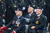 Remembrance Sunday at the Cenotaph 2015: Group B41, British Limbless Ex-Service Men's Association. Cenotaph, Whitehall, London SW1, London, Greater London, United Kingdom, on 08 November 2015 at 11:44, image #324