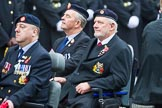 Remembrance Sunday at the Cenotaph 2015: Group B41, British Limbless Ex-Service Men's Association. Cenotaph, Whitehall, London SW1, London, Greater London, United Kingdom, on 08 November 2015 at 11:44, image #325