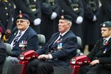 Remembrance Sunday at the Cenotaph 2015: Group B41, British Limbless Ex-Service Men's Association. Cenotaph, Whitehall, London SW1, London, Greater London, United Kingdom, on 08 November 2015 at 11:44, image #326