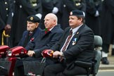 Remembrance Sunday at the Cenotaph 2015: Group B41, British Limbless Ex-Service Men's Association. Cenotaph, Whitehall, London SW1, London, Greater London, United Kingdom, on 08 November 2015 at 11:44, image #328
