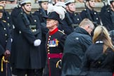 Remembrance Sunday at the Cenotaph 2015: Group B43, Royal Hospital Chelsea. Cenotaph, Whitehall, London SW1, London, Greater London, United Kingdom, on 08 November 2015 at 11:45, image #343