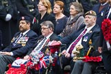Remembrance Sunday at the Cenotaph 2015: Group B46, Combat Stress. Cenotaph, Whitehall, London SW1, London, Greater London, United Kingdom, on 08 November 2015 at 11:46, image #376
