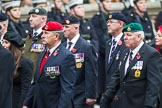 Remembrance Sunday at the Cenotaph 2015: Group B46, Combat Stress. Cenotaph, Whitehall, London SW1, London, Greater London, United Kingdom, on 08 November 2015 at 11:46, image #384