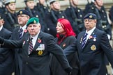 Remembrance Sunday at the Cenotaph 2015: Group B46, Combat Stress. Cenotaph, Whitehall, London SW1, London, Greater London, United Kingdom, on 08 November 2015 at 11:46, image #385