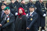 Remembrance Sunday at the Cenotaph 2015: Group B46, Combat Stress. Cenotaph, Whitehall, London SW1, London, Greater London, United Kingdom, on 08 November 2015 at 11:46, image #386