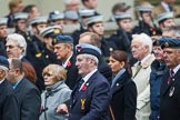Remembrance Sunday at the Cenotaph 2015: Group C1, Royal Air Forces Association. Cenotaph, Whitehall, London SW1, London, Greater London, United Kingdom, on 08 November 2015 at 11:46, image #397