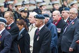 Remembrance Sunday at the Cenotaph 2015: Group C1, Royal Air Forces Association. Cenotaph, Whitehall, London SW1, London, Greater London, United Kingdom, on 08 November 2015 at 11:46, image #398