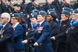 Remembrance Sunday at the Cenotaph 2015: Group C1, Royal Air Forces Association. Cenotaph, Whitehall, London SW1, London, Greater London, United Kingdom, on 08 November 2015 at 11:46, image #403