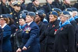 Remembrance Sunday at the Cenotaph 2015: Group C1, Royal Air Forces Association. Cenotaph, Whitehall, London SW1, London, Greater London, United Kingdom, on 08 November 2015 at 11:46, image #404
