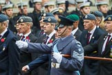 Remembrance Sunday at the Cenotaph 2015: C2, Royal Air Force Regiment Association. Cenotaph, Whitehall, London SW1, London, Greater London, United Kingdom, on 08 November 2015 at 11:47, image #430