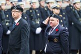 Remembrance Sunday at the Cenotaph 2015: Group C4, Royal Observer Corps Association (Anniversary). Cenotaph, Whitehall, London SW1, London, Greater London, United Kingdom, on 08 November 2015 at 11:48, image #455