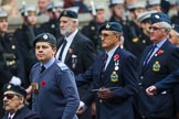 Remembrance Sunday at the Cenotaph 2015: Group C6, RAFLING Association. Cenotaph, Whitehall, London SW1, London, Greater London, United Kingdom, on 08 November 2015 at 11:48, image #464