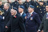 Remembrance Sunday at the Cenotaph 2015: Group C6, RAFLING Association. Cenotaph, Whitehall, London SW1, London, Greater London, United Kingdom, on 08 November 2015 at 11:48, image #468