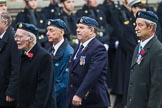 Remembrance Sunday at the Cenotaph 2015: Group C6, RAFLING Association. Cenotaph, Whitehall, London SW1, London, Greater London, United Kingdom, on 08 November 2015 at 11:48, image #469