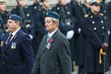 Remembrance Sunday at the Cenotaph 2015: Group C6, RAFLING Association. Cenotaph, Whitehall, London SW1, London, Greater London, United Kingdom, on 08 November 2015 at 11:48, image #470