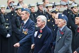 Remembrance Sunday at the Cenotaph 2015: Group C9, 8 Squadron Association (New for 2015). Cenotaph, Whitehall, London SW1, London, Greater London, United Kingdom, on 08 November 2015 at 11:48, image #478