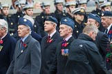 Remembrance Sunday at the Cenotaph 2015: Group C9, 8 Squadron Association (New for 2015). Cenotaph, Whitehall, London SW1, London, Greater London, United Kingdom, on 08 November 2015 at 11:48, image #479