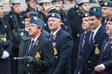 Remembrance Sunday at the Cenotaph 2015: Group C11, Royal Air Force & Defence Fire Services Association. Cenotaph, Whitehall, London SW1, London, Greater London, United Kingdom, on 08 November 2015 at 11:48, image #482