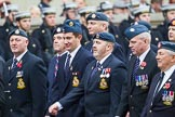 Remembrance Sunday at the Cenotaph 2015: Group C11, Royal Air Force & Defence Fire Services Association. Cenotaph, Whitehall, London SW1, London, Greater London, United Kingdom, on 08 November 2015 at 11:48, image #483