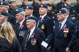 Remembrance Sunday at the Cenotaph 2015: Group C11, Royal Air Force & Defence Fire Services Association. Cenotaph, Whitehall, London SW1, London, Greater London, United Kingdom, on 08 November 2015 at 11:48, image #484