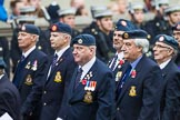 Remembrance Sunday at the Cenotaph 2015: Group C11, Royal Air Force & Defence Fire Services Association. Cenotaph, Whitehall, London SW1, London, Greater London, United Kingdom, on 08 November 2015 at 11:49, image #485