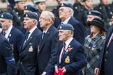 Remembrance Sunday at the Cenotaph 2015: Group C12, Royal Air Force Mountain Rescue Association. Cenotaph, Whitehall, London SW1, London, Greater London, United Kingdom, on 08 November 2015 at 11:49, image #491