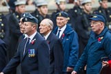 Remembrance Sunday at the Cenotaph 2015: Group C13, Units of the Far East Air Force (New name for 2015, contingents combined). Cenotaph, Whitehall, London SW1, London, Greater London, United Kingdom, on 08 November 2015 at 11:49, image #496