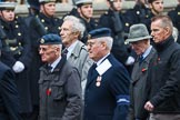 Remembrance Sunday at the Cenotaph 2015: Group C15, Royal Air Force Airfield Construction Branch Association. Cenotaph, Whitehall, London SW1, London, Greater London, United Kingdom, on 08 November 2015 at 11:49, image #509