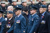 Remembrance Sunday at the Cenotaph 2015: Group C16, RAFSE(s) Assoc (New for 2015). Cenotaph, Whitehall, London SW1, London, Greater London, United Kingdom, on 08 November 2015 at 11:49, image #512