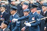 Remembrance Sunday at the Cenotaph 2015: Group C16, RAFSE(s) Assoc (New for 2015). Cenotaph, Whitehall, London SW1, London, Greater London, United Kingdom, on 08 November 2015 at 11:49, image #515