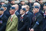 Remembrance Sunday at the Cenotaph 2015: Group C16, RAFSE(s) Assoc (New for 2015). Cenotaph, Whitehall, London SW1, London, Greater London, United Kingdom, on 08 November 2015 at 11:49, image #519