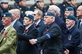 Remembrance Sunday at the Cenotaph 2015: Group C16, RAFSE(s) Assoc (New for 2015). Cenotaph, Whitehall, London SW1, London, Greater London, United Kingdom, on 08 November 2015 at 11:49, image #520