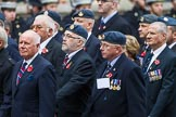 Remembrance Sunday at the Cenotaph 2015: Group C17, Royal Air Force Movements and Mobile Air Movements Squadron Association (RAF MAMS) (New for 2015). Cenotaph, Whitehall, London SW1, London, Greater London, United Kingdom, on 08 November 2015 at 11:49, image #522