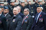 Remembrance Sunday at the Cenotaph 2015: Group C17, Royal Air Force Movements and Mobile Air Movements Squadron Association (RAF MAMS) (New for 2015). Cenotaph, Whitehall, London SW1, London, Greater London, United Kingdom, on 08 November 2015 at 11:49, image #524