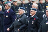 Remembrance Sunday at the Cenotaph 2015: Group C22, Federation of Royal Air Force Apprentice & Boy Entrant Associations. Cenotaph, Whitehall, London SW1, London, Greater London, United Kingdom, on 08 November 2015 at 11:50, image #549