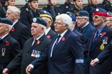 Remembrance Sunday at the Cenotaph 2015: Group C22, Federation of Royal Air Force Apprentice & Boy Entrant Associations. Cenotaph, Whitehall, London SW1, London, Greater London, United Kingdom, on 08 November 2015 at 11:50, image #550