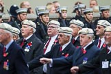 Remembrance Sunday at the Cenotaph 2015: Group C24, Royal Air Force Police Association. Cenotaph, Whitehall, London SW1, London, Greater London, United Kingdom, on 08 November 2015 at 11:50, image #564