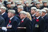 Remembrance Sunday at the Cenotaph 2015: Group C24, Royal Air Force Police Association. Cenotaph, Whitehall, London SW1, London, Greater London, United Kingdom, on 08 November 2015 at 11:50, image #566