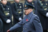 Remembrance Sunday at the Cenotaph 2015: Group D1, Not Forgotten Association. Cenotaph, Whitehall, London SW1, London, Greater London, United Kingdom, on 08 November 2015 at 11:51, image #577