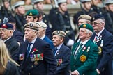 Remembrance Sunday at the Cenotaph 2015: Group D1, Not Forgotten Association. Cenotaph, Whitehall, London SW1, London, Greater London, United Kingdom, on 08 November 2015 at 11:51, image #581