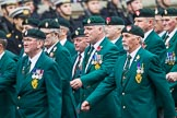 Remembrance Sunday at the Cenotaph 2015: Group D3, Ulster Defence Regiment. Cenotaph, Whitehall, London SW1, London, Greater London, United Kingdom, on 08 November 2015 at 11:51, image #594