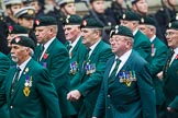 Remembrance Sunday at the Cenotaph 2015: Group D3, Ulster Defence Regiment. Cenotaph, Whitehall, London SW1, London, Greater London, United Kingdom, on 08 November 2015 at 11:51, image #595
