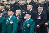Remembrance Sunday at the Cenotaph 2015: Group D3, Ulster Defence Regiment. Cenotaph, Whitehall, London SW1, London, Greater London, United Kingdom, on 08 November 2015 at 11:51, image #600