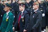 Remembrance Sunday at the Cenotaph 2015: Group D3, Ulster Defence Regiment. Cenotaph, Whitehall, London SW1, London, Greater London, United Kingdom, on 08 November 2015 at 11:51, image #602